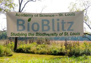 2015 BB sign at pavilion