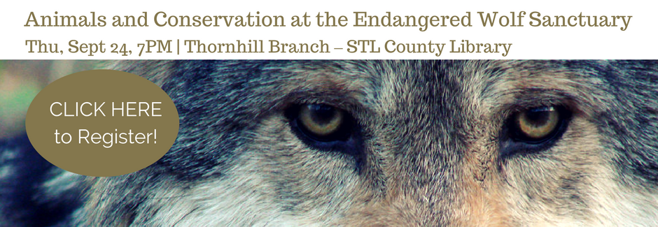 Animals-and-Conservation-at-the-Endangered-Wolf-Sanctuaryd-Slider