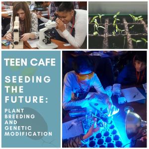Copy of Seeding the Future TSC advertisement image