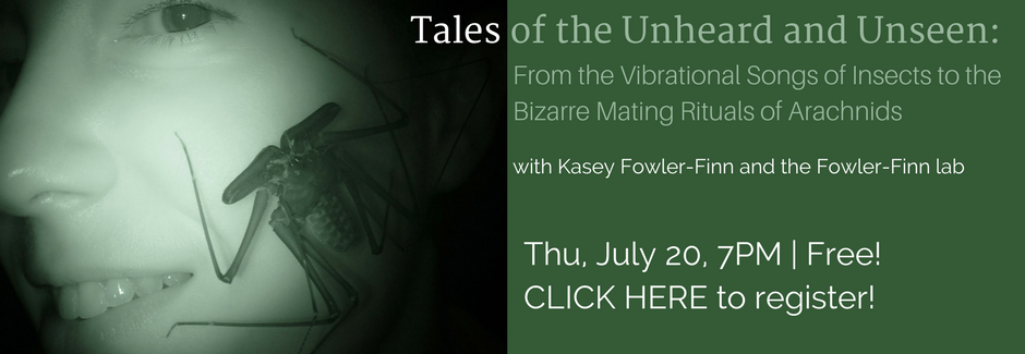 Slider-Tales-of-the-Unheard